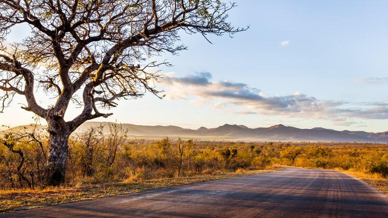 autotour en afrique du sud avec sensations du monde. Black Bedroom Furniture Sets. Home Design Ideas