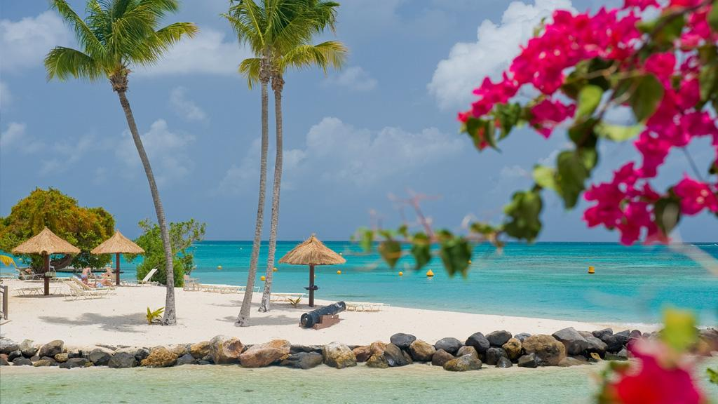 Séjour Martinique en petit déjeuner