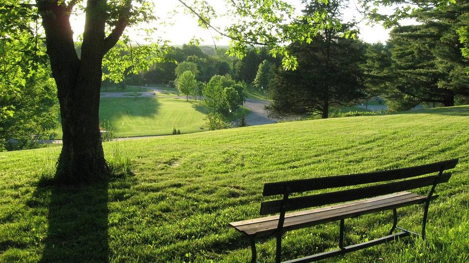 Parc et jardin à Berlin