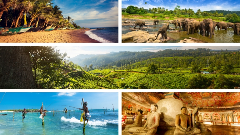 Sri Lanka - Top 5 des destinations en 2019